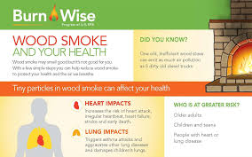learn before you burn healthy use of your fireplace or wood stove