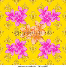 Plumerias Plumerias Stock Images Royalty Free Images U0026 Vectors Shutterstock
