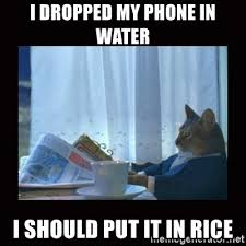 Phone Rice Meme - i dropped my phone in water i should put it in rice i should buy a