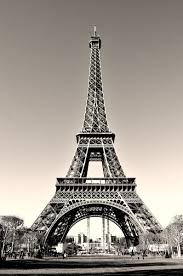 photo of the week eiffel tower