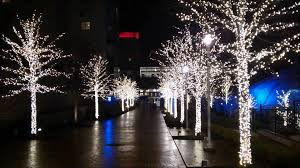 christmas lights in maryland christmas lights in national harbor maryland youtube