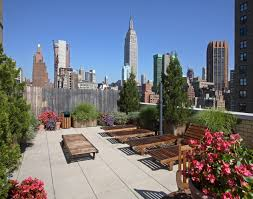Rooftop Deck Design by Landscaped And Furnished Roof Deck At Habitat Building Nyc Great