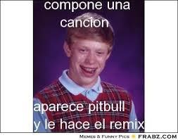 Pitbull Meme Dale - beautiful pitbull meme dale pitbull meme pitbull meme dale jpg