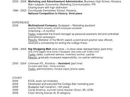 fmcg resume sample resumecv sample format fmcg work experience