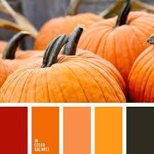 Autumn Color Schemes 3103 Best Palettes Et Nuances Images On Pinterest Colors Colour