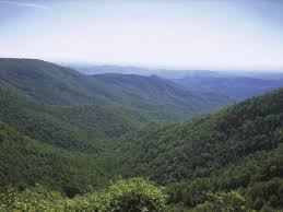 North Carolina vegetaion images North carolina history geography state united states jpg