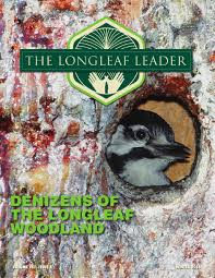 the longleaf leader winter 2016 by the longleaf alliance issuu