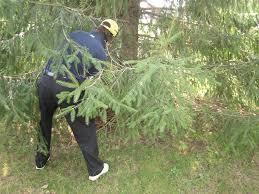 golf tips kate hughes school bunkers paradise