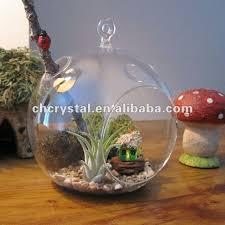 hanging glass globe air plant terrarium bauble hanging glass