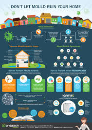 mould removal infographic don u0027t let mould ruin your home
