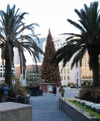 gumbo u0027s pic of the day dec 25 2014 macy u0027s christmas tree