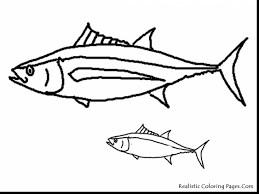 beautiful simple fish coloring pages with fish coloring pages