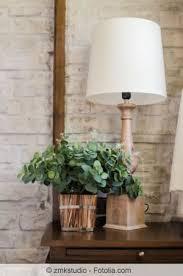 grünpflanzen im schlafzimmer pflanzen im schlafzimmer tipps für die richtigen zimmerpflanzen
