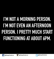 Not A Morning Person Meme - i m not a morning person i mnot even an afternoon person pretty much