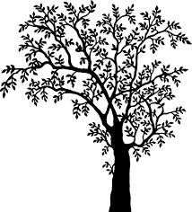 free vector graphic tree plant vegetation nature free image