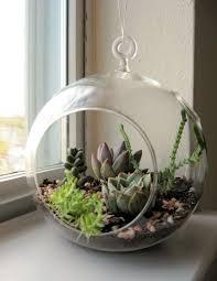 3pcs set diy hanging planter vase with air plant kits glass globe