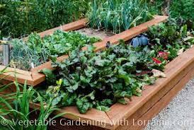 raised vegetable garden beds gardening ideas