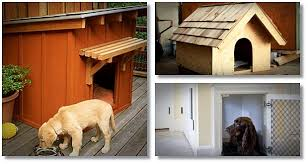 easy build dog house plans review learn how to design and make