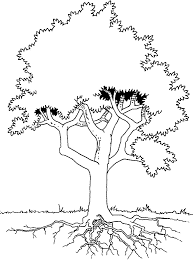 coloring tree with roots picture