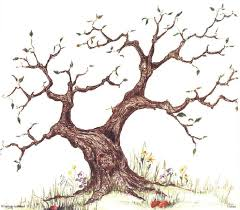 9 best family trees images on family trees clarks and