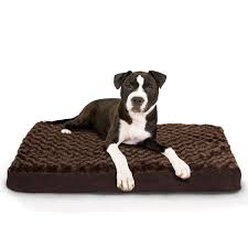 Kong Dog Beds Bedroom Stunning Costco Dog Beds For Your Pets Furniture Ideas