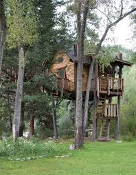 Cool Tree Houses 29 Best Tree House Ideas Images On Pinterest Tree House Designs