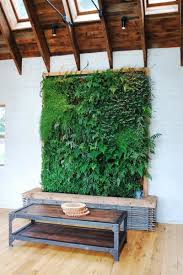 plant wall indoor home design ideas