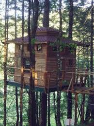 3163 best tree and fairy houses images on pinterest treehouses