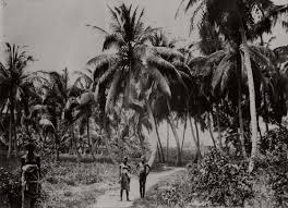 vintage photos of west african villages and its people 1910 1913