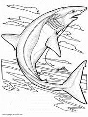 sea ocean animals coloring pages