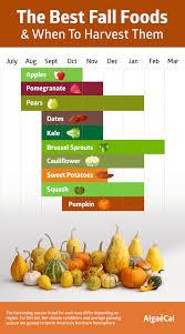 what u0027s in season the best fall foods