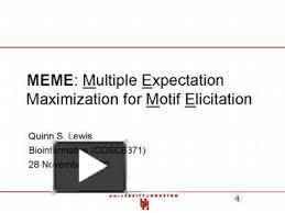 Meme Motif - ppt meme multiple expectation maximization for motif