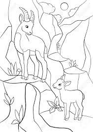 coloring pages mother ibex with her little cute baby ibex on