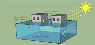 Floating Houses Schematics Of The Effects Of Floating Houses On A Water Body