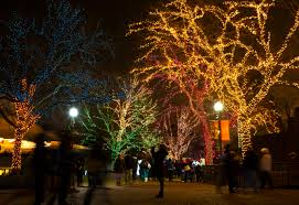 Zoo Lights by Lincoln Park Zoolights Enjoy Illinois