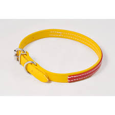 dog collar made from beta biothane any 2 color combo