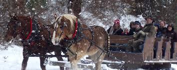 winter activities in seattle