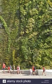 vertical garden vertical garden eco stock photos u0026 vertical garden eco stock