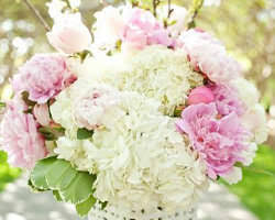 Florist Dallas Top 10 Florists In Dallas Quick Flowers Delivery Service