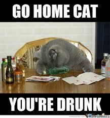 Drunk Cat Meme - you re drunk cat by xchris00 meme center