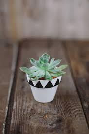 terracotta pots 25 simple diy ways to customize u0026 paint terra cotta pots homelovr