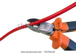 nippers stock images royalty free images u0026 vectors shutterstock