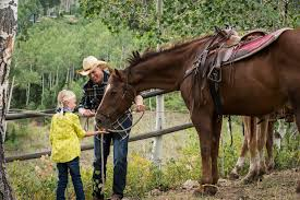 thanksgiving horse pictures park city horseback riding stables ranches u0026 outfitters