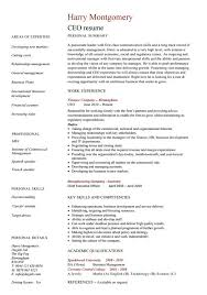 ceo resume template executive assistant resume example resum