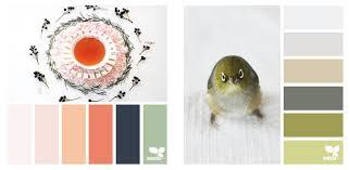 color schemes 2017 ultimate designer s color guide 2017 color forecast 2017