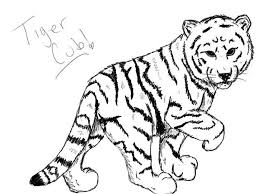 a nice sketch of white tiger cub coloring page download u0026 print