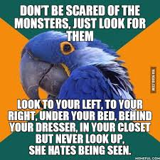 Paranoid Parrot Memes - spook alert did i use the meme right it s called paranoid parrot