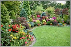 Small Garden Plants Ideas Garden Attractive Small Ideas With Colorful Gardening Also Plants
