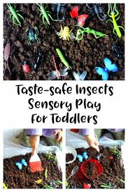 835 best bugs u0026 insect activities for kids images on pinterest
