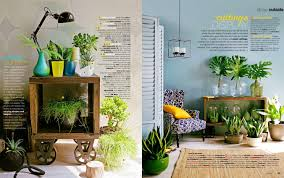 plants that don t need light plant indoor plant pot 92 cool ideas for beautiful modern flower